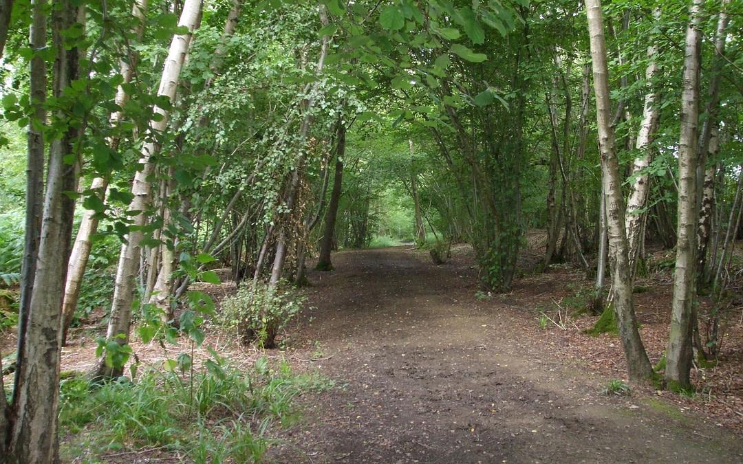 Tasty Countyside Walk