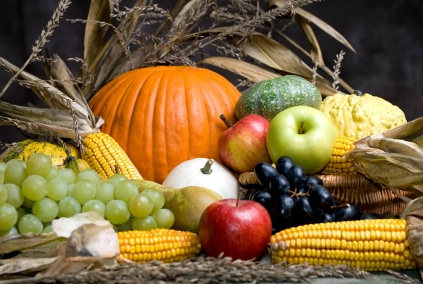 Harvest Festival Celebrations – Steyning & District Churches