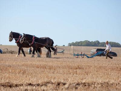 West Grinstead & District Agricultural Society Ploughing Matches & Show