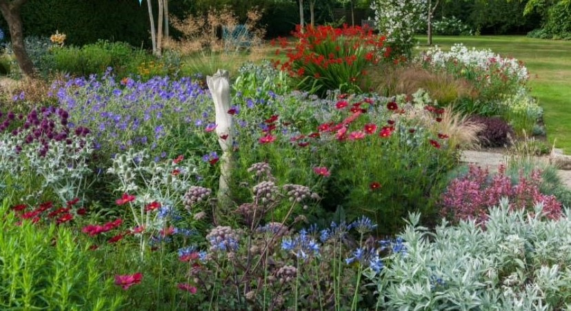 Saffrons Open Garden for Chestnut Tree House