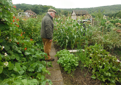 Champion Allotment 2020 Competition