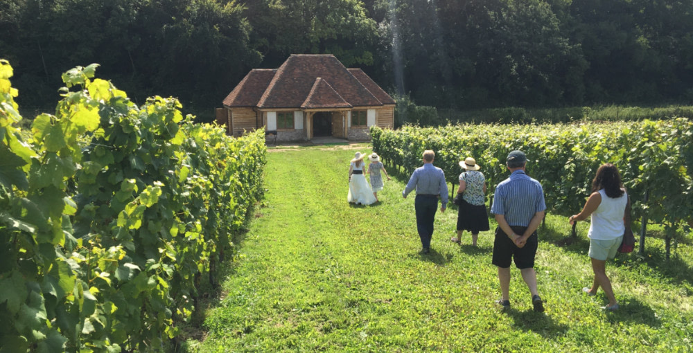 Wiston Vineyard Open Day & Tutored Tasting